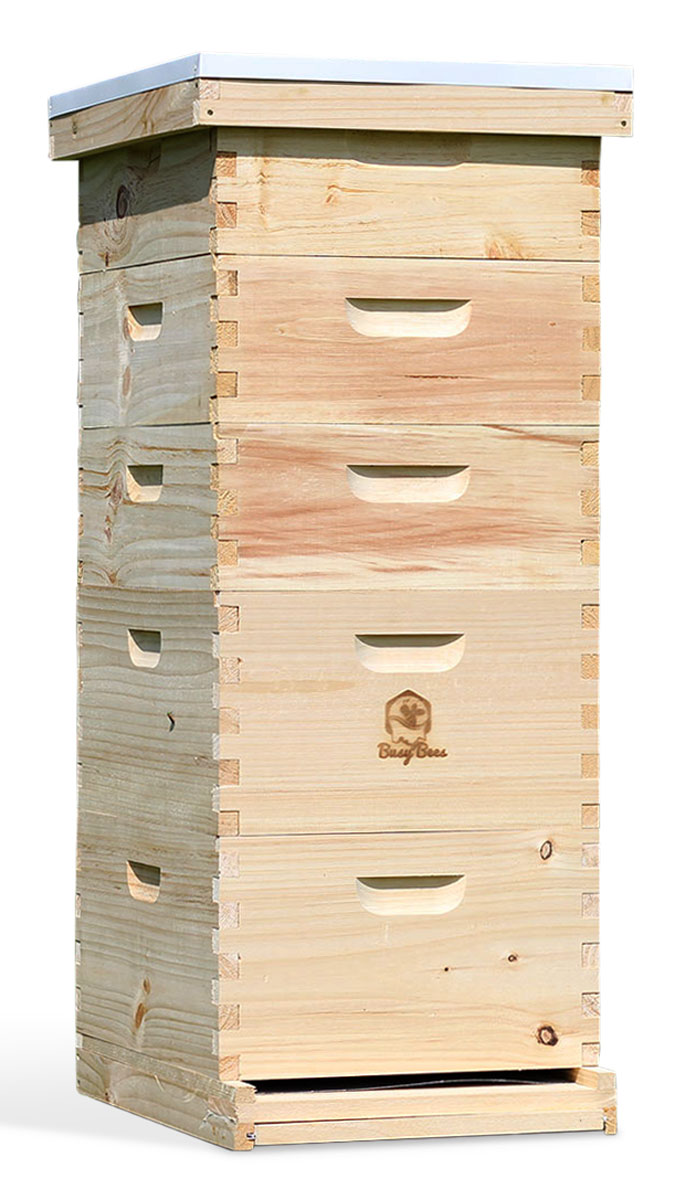 all frames and foundation Langstroth 10 frame w// honey super Bee Hive