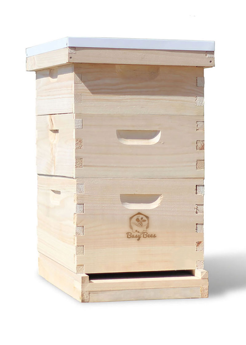 BeeHive for Sale - Perfect 8 Frame for Beginner Honey Production