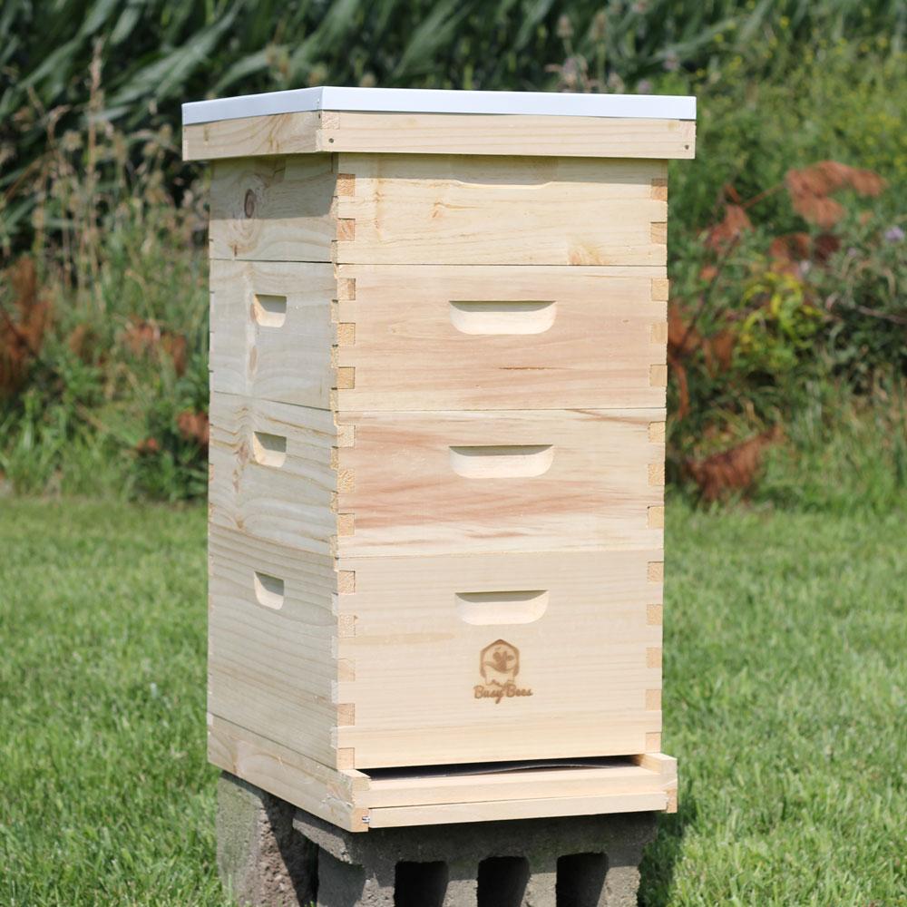 BeeHive for Sale | Honey Production Starter Kit | Free ...